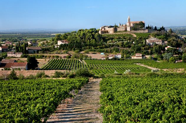 LA PROVENCE DES PAPES version Escapade viticole*
